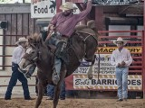 Davie Florida Pro Rodeo - Steven Hodel Event Photography