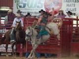 Horse Rider Davie Florida Pro Rodeo - Steven Hodel Event Photography