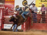 Bucking Bull Davie Florida Pro Rodeo - Steven Hodel Event Photography