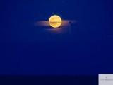 Full Moon Photography by Steven Hodel