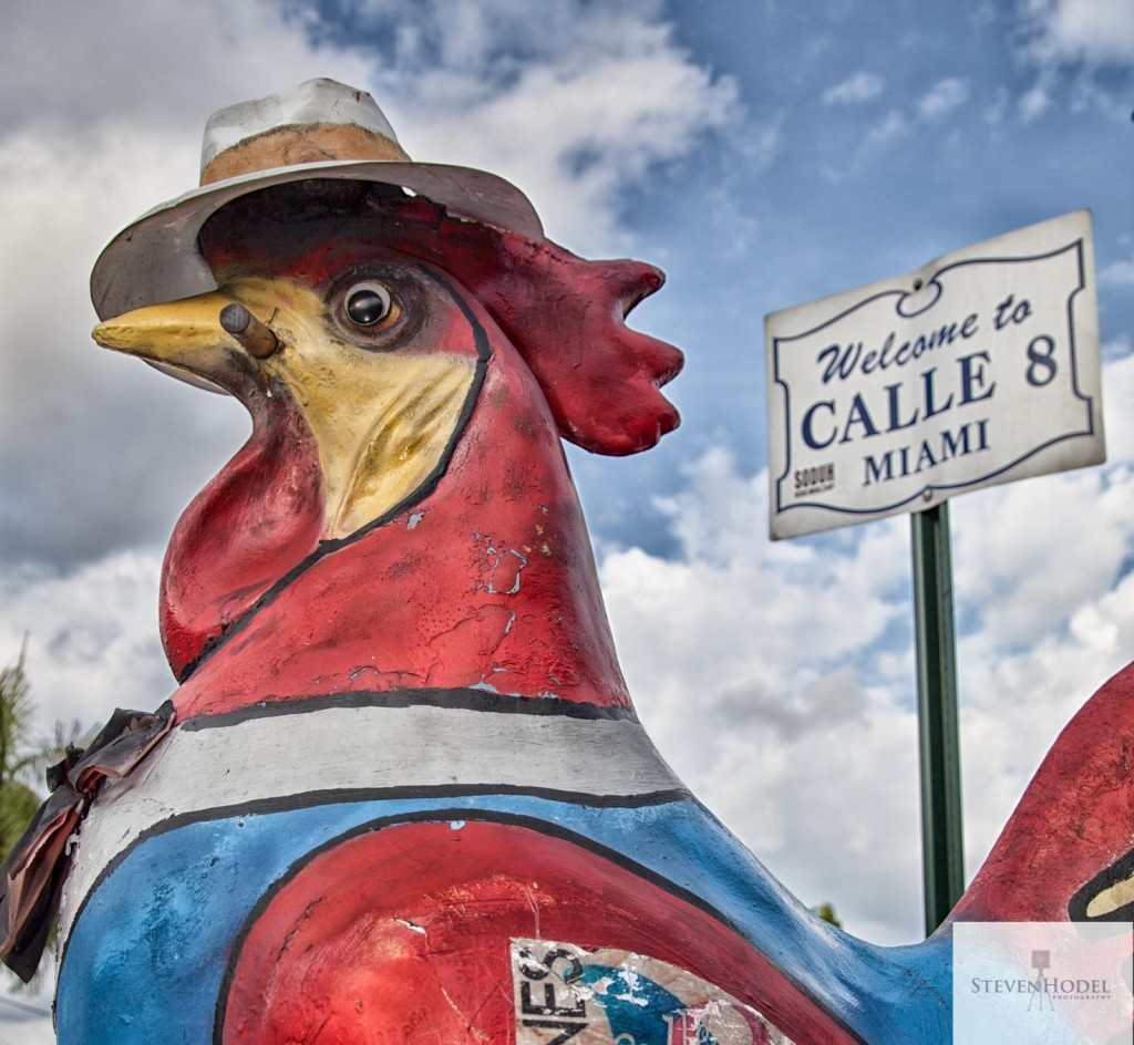 Steven Hodel Photography - Calle Ocho Rooster - Miami